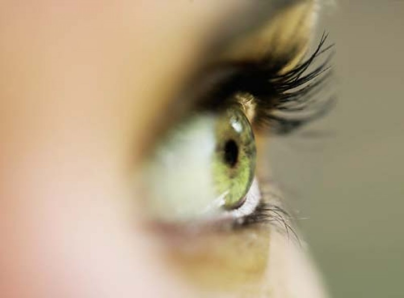 Ochii întunecați - Vasculita September