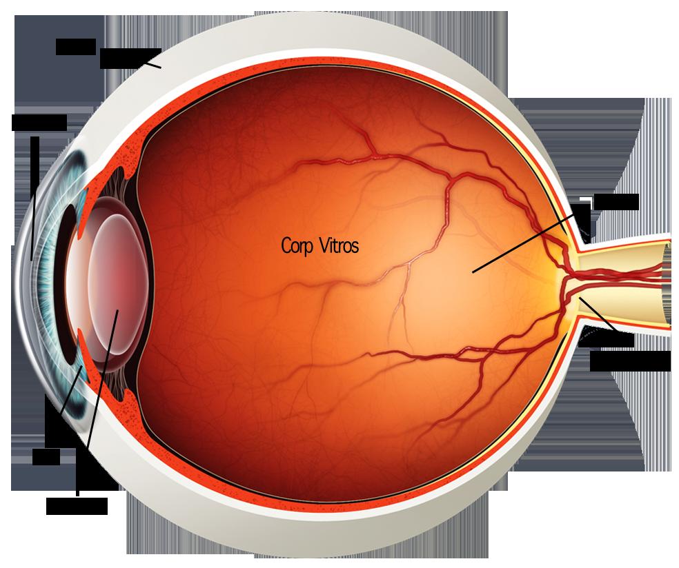operație hipermetropie legată de vârstă gimnastică pentru ochi restabilirea completă a vederii