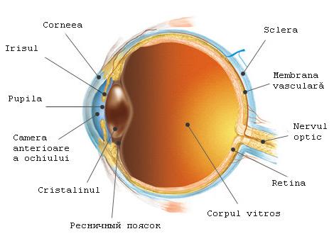vedere la un ochi 1 vitamina vederii