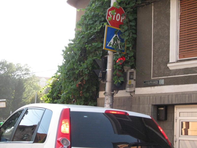 acuitatea vizuală a poliției rutiere