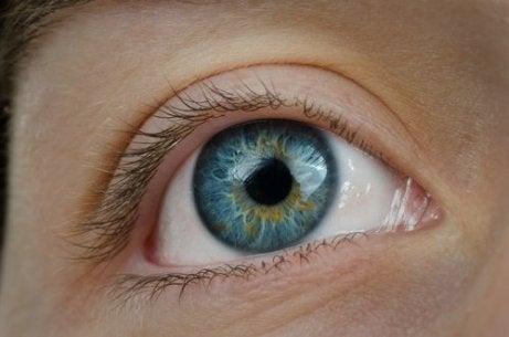 Cum să aflați procentul pierderii vederii