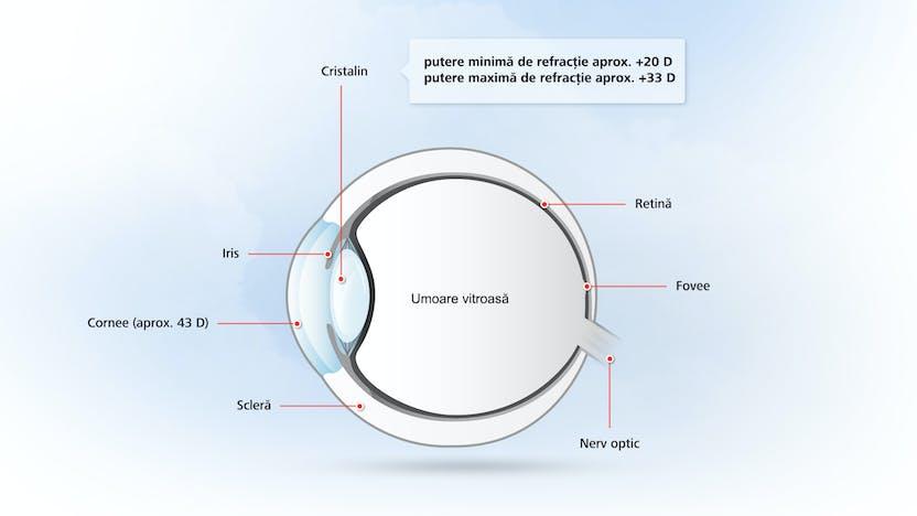 deficiențe de vedere în viața umană examen normal de vedere