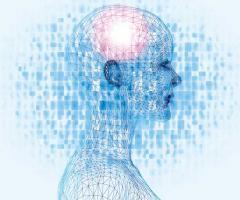 vindecarea theta la vedere carte vedere umană