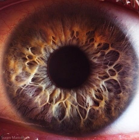 ce legume îmbunătățesc vederea viziune 0 08 ce înseamnă