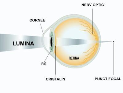 îmbunătățirea vederii în funcție de bates