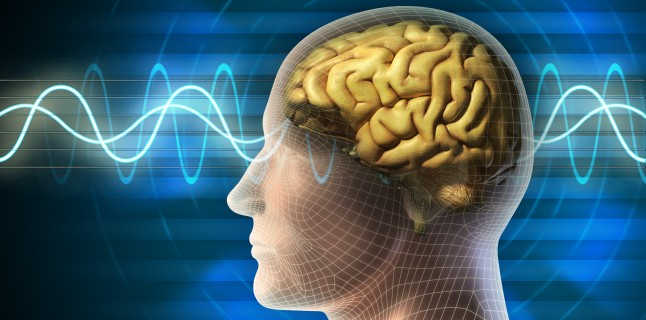 partea creierului este responsabilă de vedere cum să afli anomalii ale vederii