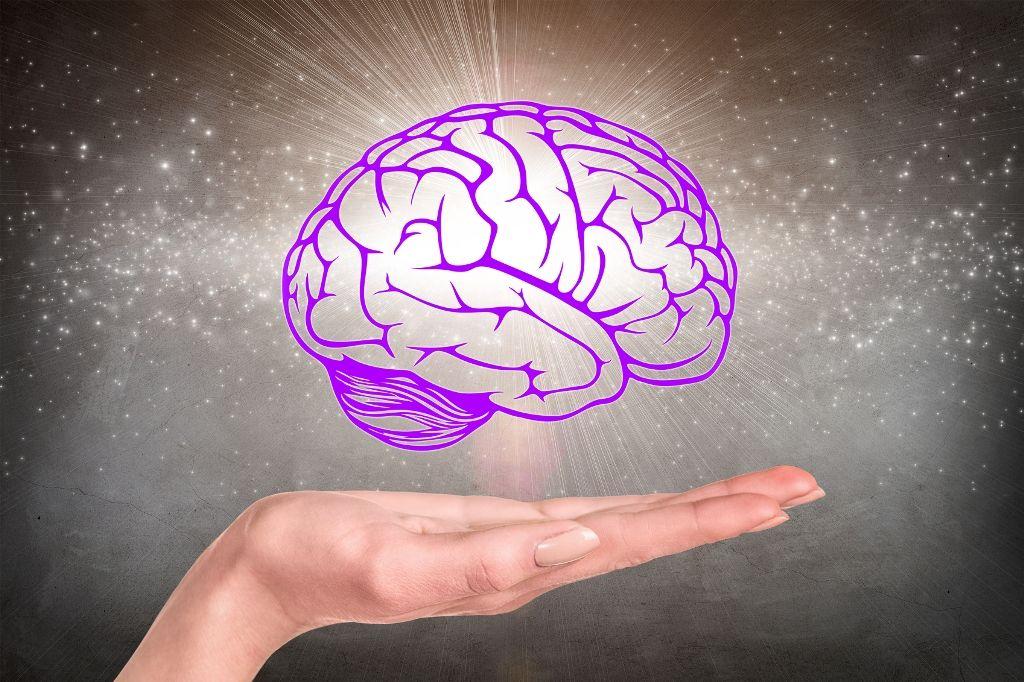 partea creierului responsabilă de vedere