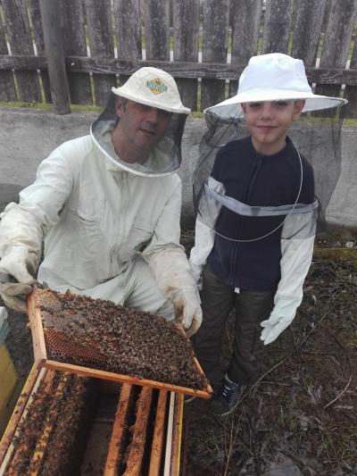 Despre neonicotinoide si deciziile privind viitorul apiculturii romanesti