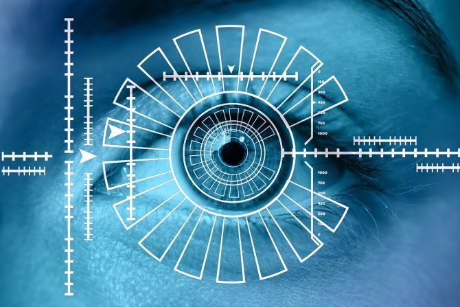 nervii afectează vederea prezintă viziunea lăcustelor