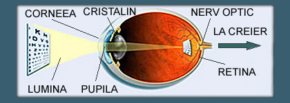 cum se formează imaginea în miopia ochiului