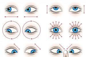 intrebare pentru un oftalmolog: imbunatatirea vederii prin alimentatie