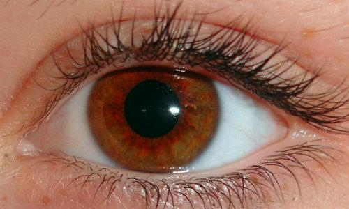 Acesta este un semn că vederea se vindecă