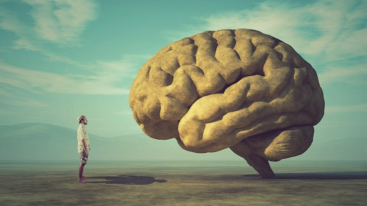 Care este corpul calos și funcția sa în creier?