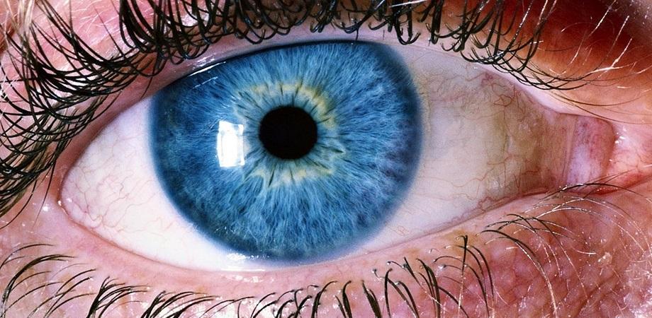 orbire completă la ce vedere viziunea umană la amurg