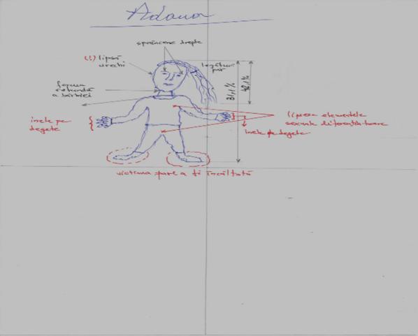 organe de vedere în desene