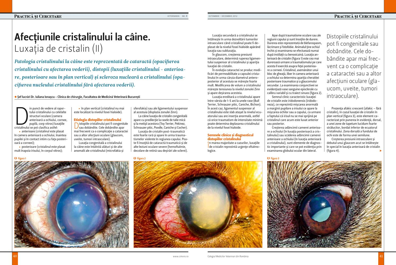 patologia vederii