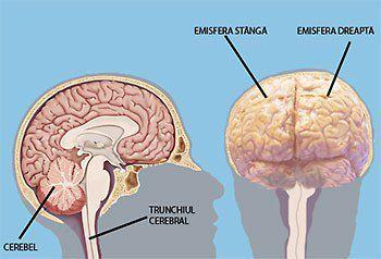 """Există o """"super-entitate"""" în interiorul creierului uman"""