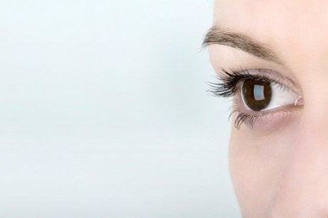 plante medicinale pentru îmbunătățirea vederii
