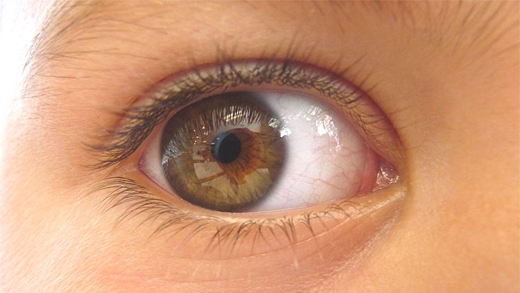 regenerarea vederii și a țesuturilor oculare