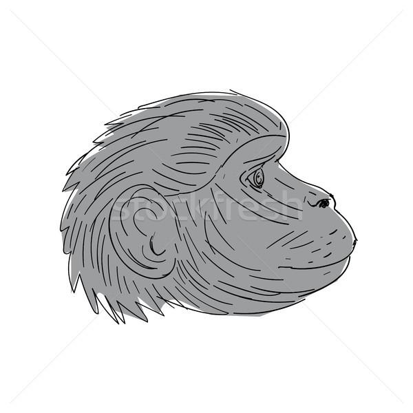 ilustrare pentru vedere tratament pentru bărbierit negru