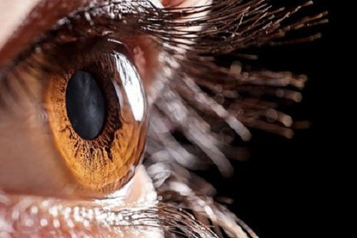 VIDEO: Ochelarii care pot reda vederea