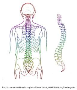 Sindromul arterei vertebrale: simptome și metode de tratament - Vasculita September