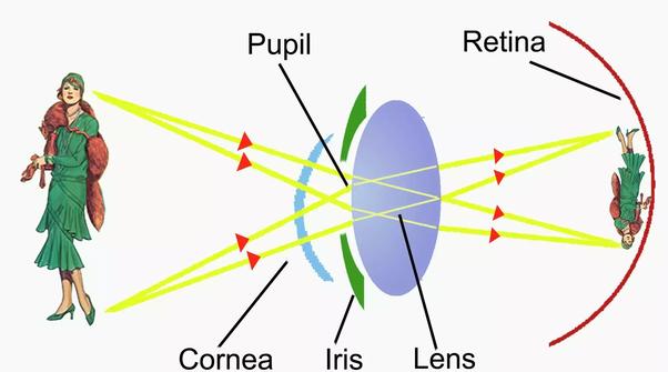 Binoclu Astro TS Optics 25x, inclusiv filtru nebuloase - 7-pitici.ro
