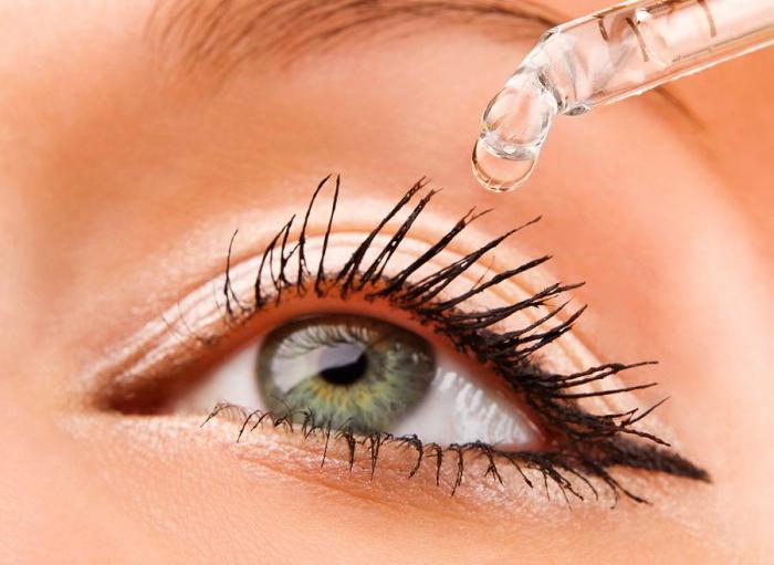 vederea unui spitz antioxidanți pentru vedere
