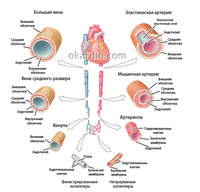 Sindromul de oboseala vizuala la calculator - Revista Galenus